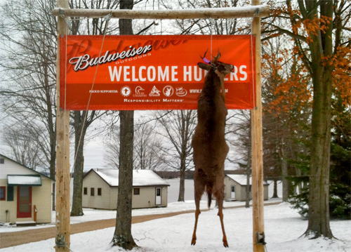 Curtis MI Hunting | Curtis Hunting | Curtis Michigan Deer Hunting Resort | Accommodations | Lodging